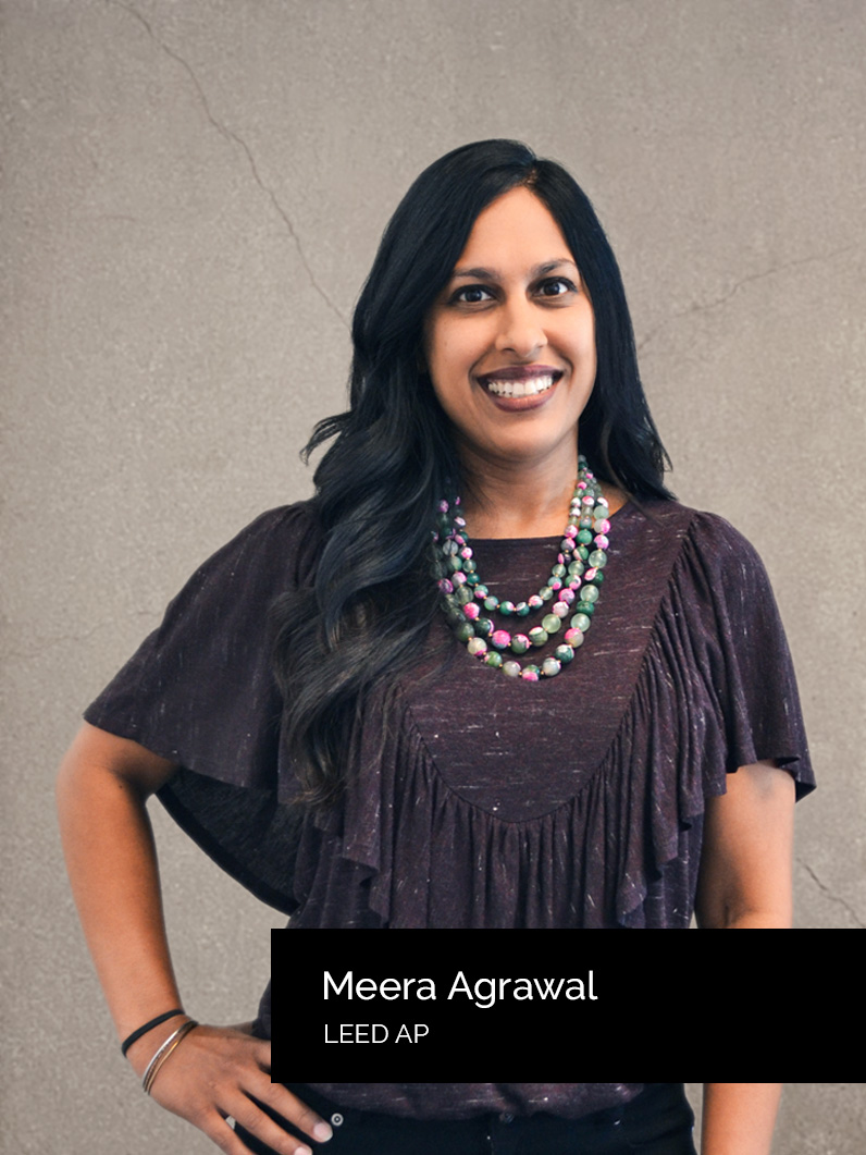 Meera Agrawal